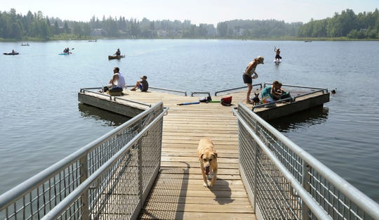 People with their dogs swarm to DeLong Lake hoping to stay cool in the record breaking heat in Anchorage, Alaska, Friday, July 5, 2019.