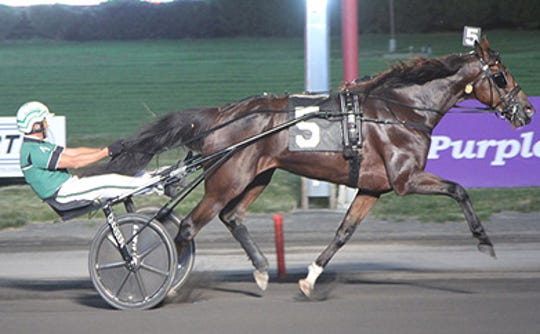 Darling Mearas S, a 6-year-old Swedish owned and bred horse, tied the Meadowlands Race Track's mile record on July 5, 2019.