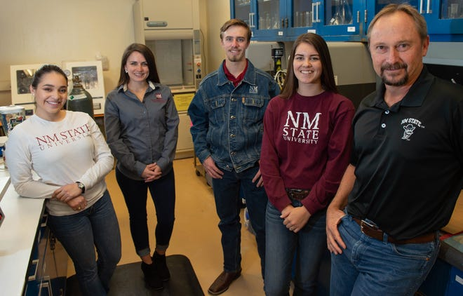 Clint Löest, animal nutritionist and professor of animal and range sciences, and his graduate students are exploring an alternative strategy to improve livestock health. Pictured, from left, are Francesca Lopez, Mary Catey, Logan Klump, Cheyanne Mercier and Löest in a laboratory in Knox Hall.