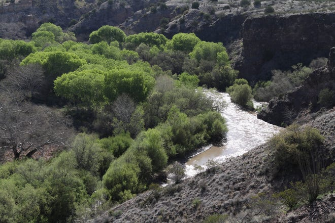 A two-for-one hunting/fishing opportunity awaits hearty sportsmen on public land in the Lower Gila Box northwest of Lordsburg.