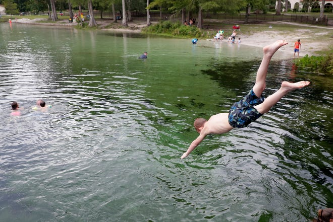 A young boy dives headfirst into the chilly water at Wakulla Springs Saturday, July 6, 2019.
