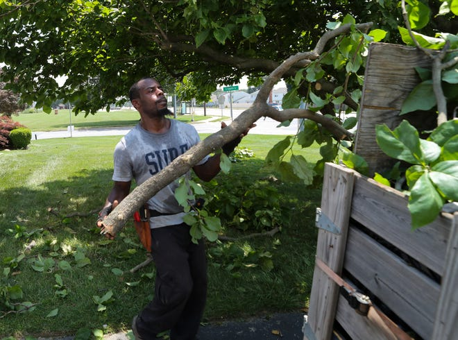 """George Wright prunes a tree at a customer's New Castle home Friday. Wright owns his own landscaping service after taking part in the Delaware Center for Horticulture's """"Branches to Chances"""" job training program."""