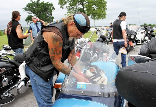 Rod Petersen, of Warsaw, straps a hat on his dog, Stingray, before riding in Hogs for Dogs on Sunday. Stingray is also a service animal for Petersen and lets him know when his blood sugar is getting low.