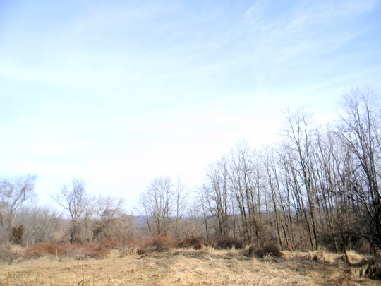 A lawsuit challenging Raritan Township's deer hunting resolutions centers on the Urbach Farm.
