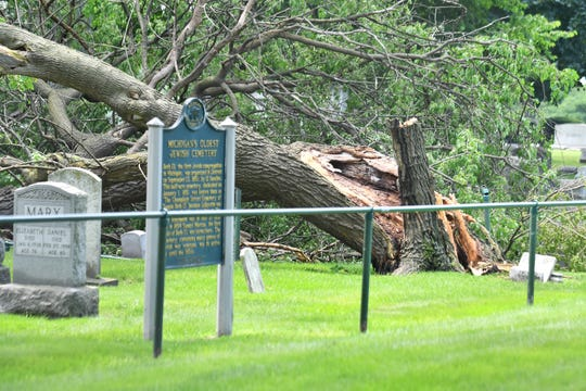 A large tree lays broken inside the Elmwood Cemetery in Detroit on Sunday following heavy rains.