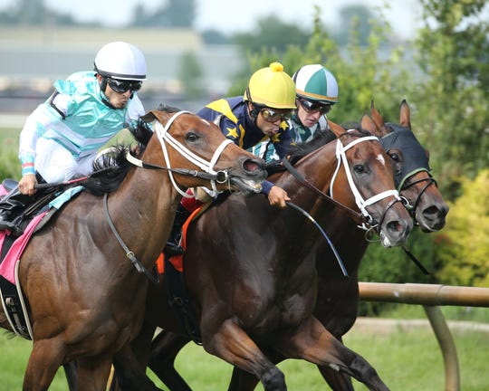 Sensitive (middle) runs to a win in the Ellis Park Turf on Sunday, July 7.