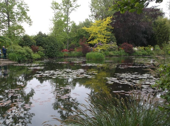 The arrangement of trees and shrubs around a pond in Monet's garden embraces color, form and texture.