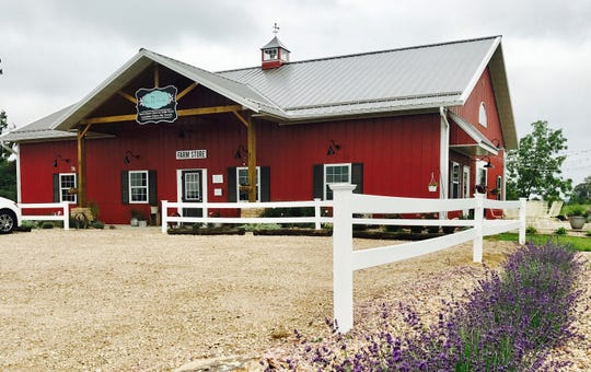 Lavender farms: Wisconsin farmers find uses for aromatic