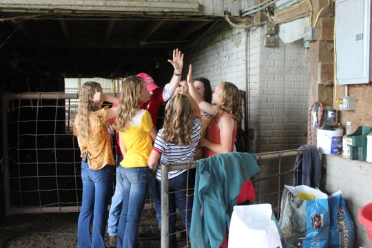 The Graham sisters share a group high-five with Clay Hall after a successful first meeting and practice for the July 30 steer show.