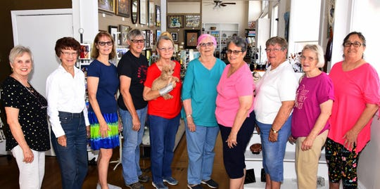 The Deming Art Council recently elected new members to its board of directors. Pictured are, from left, Diane Hudgens, Judy Welch, Peggy Westenhofer, Dru Stevens, outgoing member, Patricia Schneider, Pat Guthrie, Nancy Costa, Ann Chrestman, Janet Bishop and Marilyn Goble.