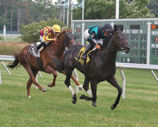 Golden Brown, ridden by Paco Lopez, won The Irish War Cry Handicap at Monmouth Park Racetrack in Oceanport NJ on Saturday July 6, 2019.