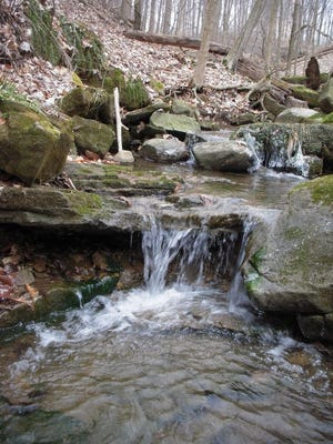 The Western Reserve Land Conservancy has acquired nearly 300 acres to establish the Niss Waterfall Preserve in the southwest area of Mansfield.