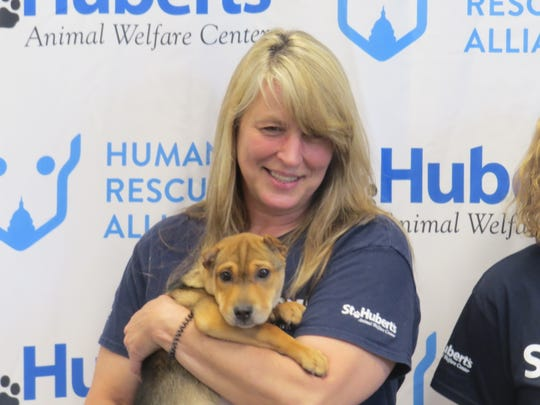A St. Hubert's Animal Welfare Center staffer holds a rescue dog during a press conference to announce St. Hubert's is merging with the Humane Rescue Alliance of Washington D.C. to create first regional, community-based, multi-state animal welfare organization in the nation.  July 9, 2019