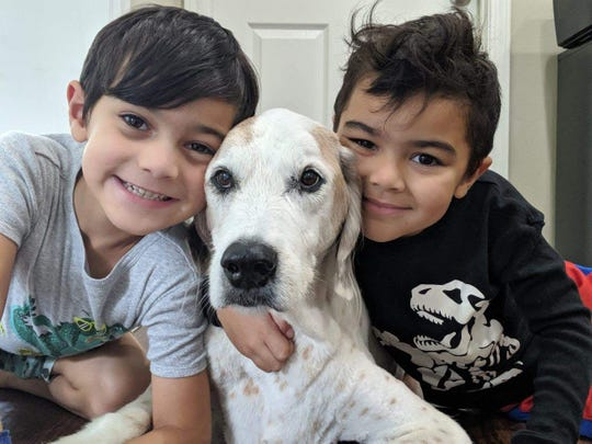 "Noah, 6, on the left, and his brother Jonah, 5, squeeze their 14-year-old pup Wilson. Wilson passed away on Monday, July 8, but not before having his ""best day ever"" thanks to the kindness of strangers."