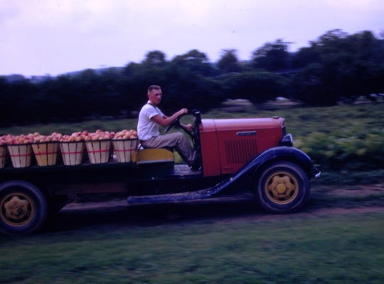 Larry Miller, son of Queena (Fahs) Miller and Myles Miller, driving the open bed orchard truck along the edge of the peach orchard as he often helped his mother and uncle and grandmother during the growing season. Circa 1966-67.