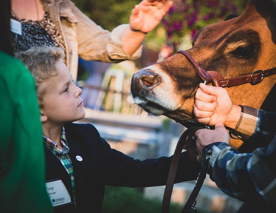 "Troy Vandenberg, who has benefited from the medical care at Children's Hospital of Wisconsin, meets ""Highway,"" the cow at the 2018 Dairy Cares of Wisconsin Garden Party. Troy was one of the non-profit's keynote speakers. Highway was visiting with guests."