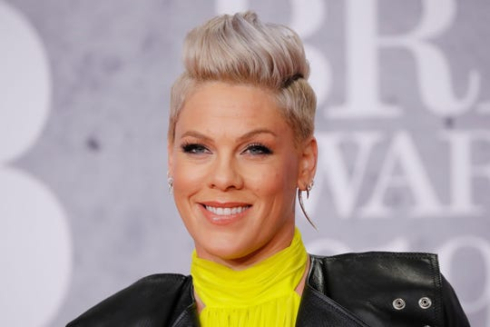 Pink shut down haters who trolled her for taking her son to a zoo in Germany this week.