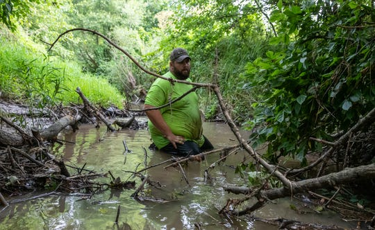 Zac Linne prepares to reach under the bank in a Daviess County creek to feel for snapping turtles on Sunday, July 7, 2019.