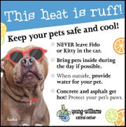 Tips from the Young Williams Animal Center on keeping pets safe in the summer heat.