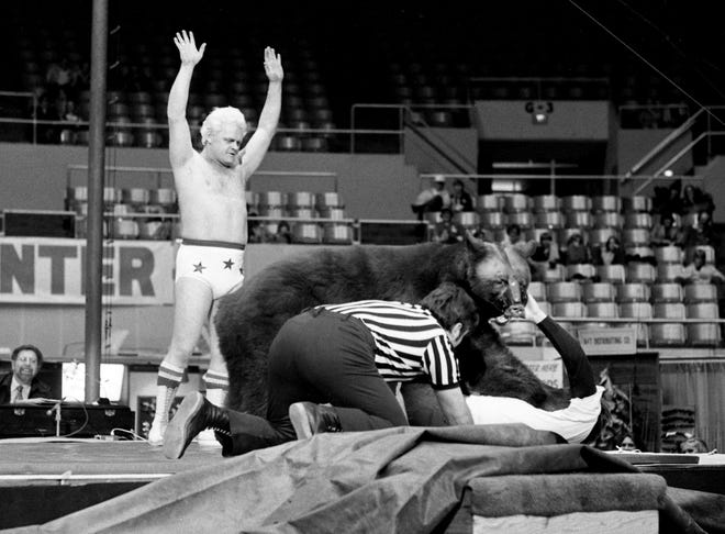 Victor, the wrestling bear, is taking on a challenger from the audience during the 22nd annual Great Lakes of the South Outdoor show Feb. 15, 1978. Trainer Tuff Truesdell, in shorts and a referee are keeping their eyes on the action.