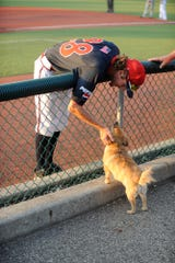 Chillicothe Paints pitcher Zach Kendall pets a dog during a game against West Virginia on July 10. Kendall did not even play baseball in 2017 or 2018, but now he is one of the best arms in the Prospect League.