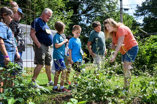 Andrea Raisor, far right, points out flourishing rattail radishes as Art Garden campers look for things to pick in Patchwork Central's garden in Evansville, Ind., Thursday, July 11, 2019.