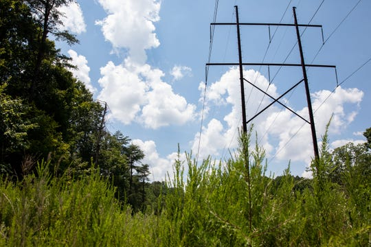 A power line runs through the part of Bernheim's land where LG&E wants to lay some of its pipeline, but otherwise the area sits mostly uninterrupted. July 9, 2019