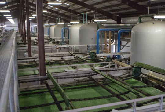 The West Monroe Sparta Reuse Facility uses naturally occurring green algae to help clean the city's waste water to supply 5 million gallons of water daily to Graphic Packaging in order to cut down the company's water draw from the natural aquifer which supplies the city's water needs.