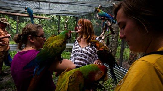 Keriellen Lohrman, center, leads visitors on a tour at Bird Gardens of Naples on Thursday, June 20, 2019.
