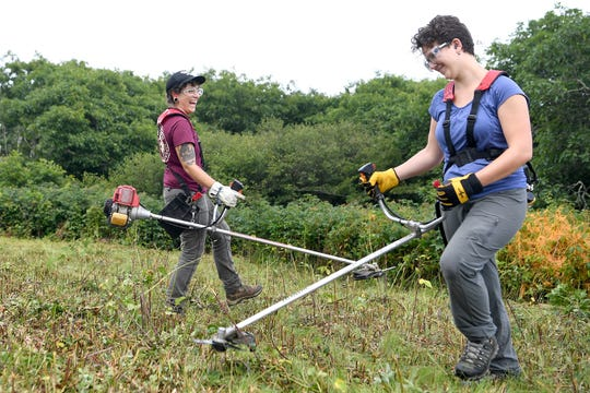 "Marietta Shattelroe, an intern with American Conservation Experience, left, and Elsa Haun, a UNCA McCullough Fellow, make jokes as they get back to work clearing woody plants from Craggy Flats off of the Blue Ridge Parkway on July 11, 2019. ""This habitat would disappear if humans didn't maintain it,"" Haun said of the project."