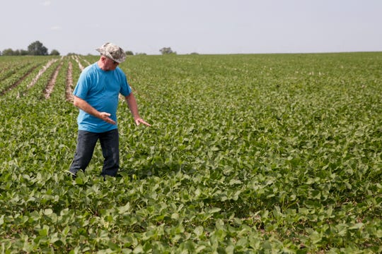 Curtis Skoog points to the spot where his family found a woman's body in 1976 in a corn field on E 200 S, Thursday, July 11, 2019 in Pine Township. The field, which is now used for growing soybeans, is located off of S 1100 E, six miles north of Otterbein.