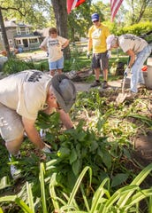 Volunteers dig up plants to relocate as they landscape a yard as part of Rock the Block, a program through Habitat for Humanity, on Thursday, July 11, 2019.