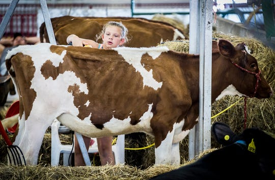 A summer 4-H schedule is still being determined by the Delaware County Fair Board and Purdue Extension.