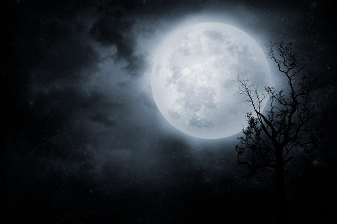 """The Museum of Nature & Science and Bureau of Land Management Las Cruces Office (BLM) present a """"Full Moon Hike at Dripping Springs"""" Tuesday, July 16."""