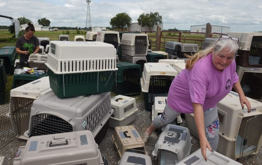 St. Landry Parish Animal Shelter Director Stacey McKnight prepares dog kennels for 100 plus dogs to be airlifted by the United States Humane Society ahead of Tropical Storm Barry.