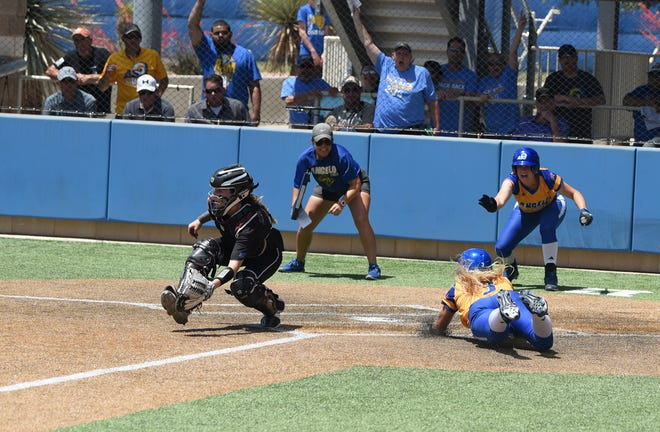 ASU Rambelles softball is one of the teams open to the new Developing Women Coaches graduate program.