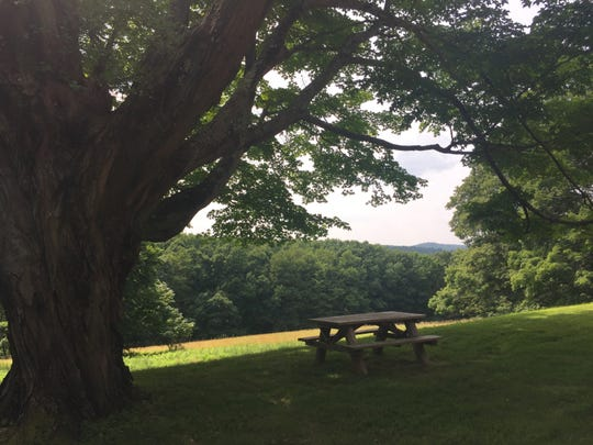A view from Merestead, a Westchester County owned park in Bedford on the property of the former Sloane estate. Photographed July 10, 2019.