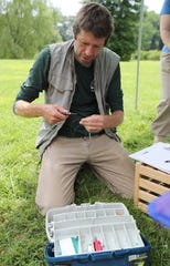 Ian Stewart, an ornithologist with the Delaware Nature Society prepares tags to place on young purple martins in Bellevue State Park.