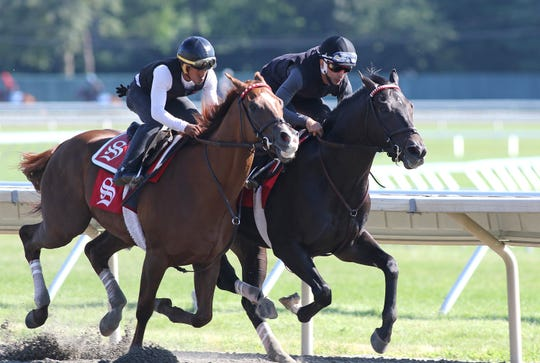 Haskell contender Joevia with jockey Hector Diaz, Jr. in the saddle puts in his final major work with stablemate Bal Bay Drive (L) on Saturday morning July 13, 2019 in preparation for next Saturday's $1,000,000 Grade 1 Haskell Invtational at Monmouth Park in Oceanport, NJ.