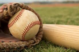 Brownsburg advanced to the Little League state finals.