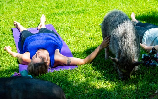 Allison Seyler pets a pig during the Yoga with Pigs class at Whispering Rise Farm and Animal Sanctuary.