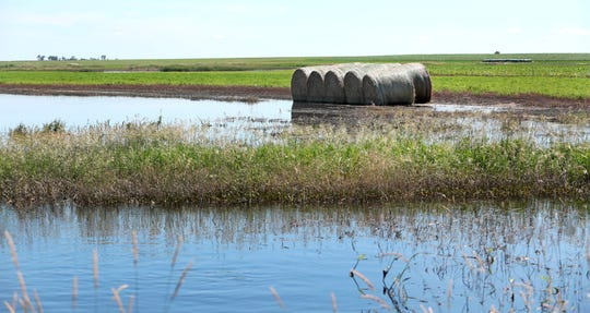 This photo taken July 2, 2019, shows bales of hay sit on the edge of a flooded creek bed near Lannie Mielke's farm in Aberdeen, S.D. While the creek is receding, the bales show the high water mark caused by nearly six inches of rain that fell on the area at the end of June.