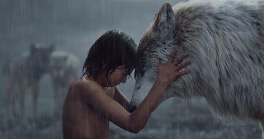 "Mowgli (Neel Sethi) shares a moment with his wolf mom Raksha (voiced by Lupita Nyong'o), one of the many photorealistic animals in Jon Favreau's ""The Jungle Book.'"