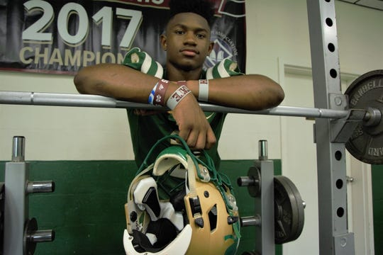 Greenville-St. Joseph athlete Dillon Johnson is a member of the 2019 Dandy Dozen. He averaged 138.8 yards per game as a junior.
