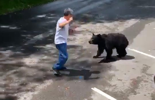 A mama bear charged at a man after he repeatedly approached her and her cubs at Cades Cove on Saturday afternoon, viral video shows. He emerged unharmed.
