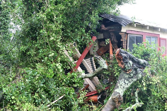 A home on Frank Street in Lafayette was severely damaged when a tree branch crashed through it Saturday as Tropical Storm Barry moved through the area.