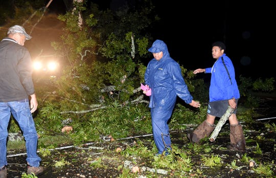 Workers remove a large tree that was toppled by Hurricane Barry winds and rain Saturday night on La. 31 between Opelousas and Leonville.