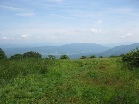 Cades Cove can be seen from the top of Gregory Bald in Great Smoky Mountains National Park.