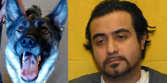 Benjamin Holliday is charged with an indicted for killing Evie, a Joseph's Legacy rescue dog.