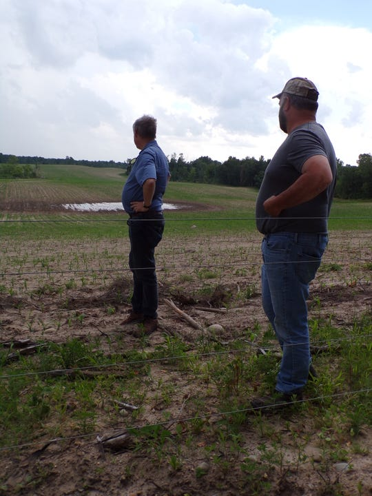U.S. Representative Fred Upton and Robert Gibson look over a newly planted field which is still showing standing water. The plants were three weeks old at that time.